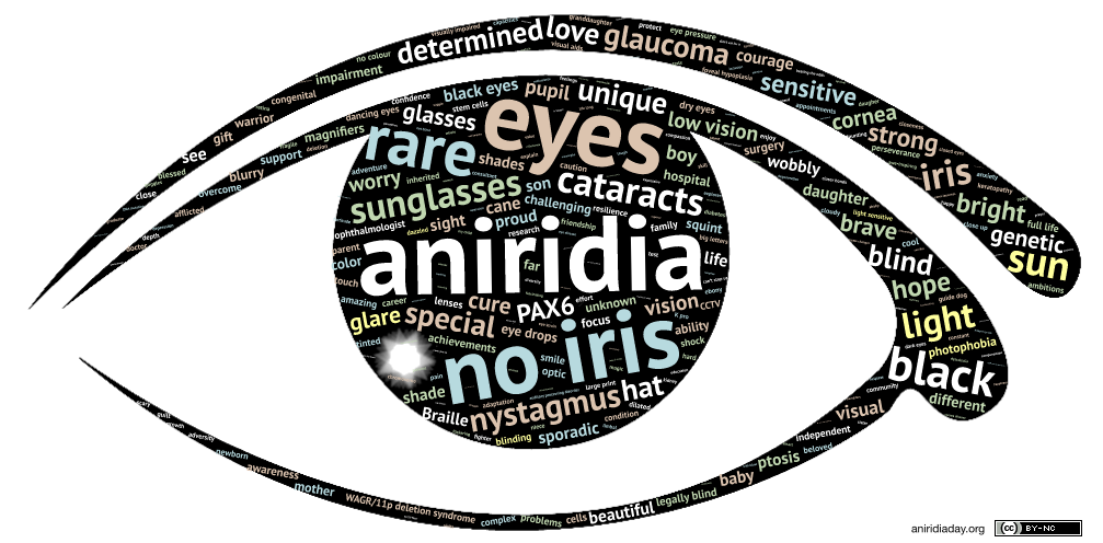 A black stylised aniridic eye shape filled with words of different colours such as 'cataracts' 'light' and 'determined'